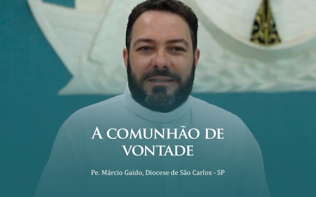 A comunhão de vontade – Pe. Márcio Gaido    #Video01