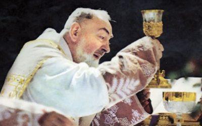 """São Padre Pio de Pietrelcina, """"um pobre frade que reza"""""""